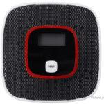 Smoke Alarm CO Monoxide Detector Poisoning Gas Warning Sensor Monitor