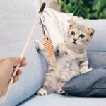 Funny Sisal Fish Cat Stick Teaser Wand Playing Rod Toys with Bell Feather