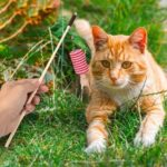 Funny Sisal Cylinder Feather Cat Stick Teaser Wand Playing Rod Toys w/Bell