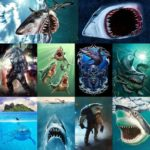 5D DIY Full Drill Diamond Painting Shark Cross Stitch Mosaic Kits (hg402)