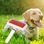 Dog Cat Needle Comb Puppy Hair Remover Brush Pets Beauty Grooming  Supplies