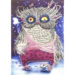 5D DIY Special Shaped Diamond Painting Bird Cross Stitch Mosaic Craft Kits