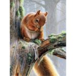 5D DIY Full Drill Diamond Painting Squirrel Cross Stitch Mosaic Kit (W1449)