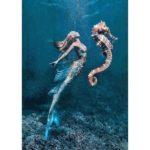 5D DIY Full Drill Diamond Painting Seahorse Cross Stitch Mosaic Craft Kits
