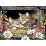 5D DIY Full Drill Diamond Painting Cat Embroidery Mosaic Kits Decor (LD054)