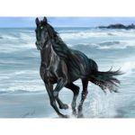 Animal Portraits 5D Full Drill DIY Diamond Painting Embroidery Kit (T188)