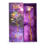 24K Crystal Foil Gift Box Gold Rose Nude Flower for Festival (Switches)