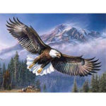 5D DIY Full Drill Diamond Painting Eagle Cross Stitch Mosaic Kit Wall Decor