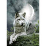 5D DIY Full Drill Diamond Painting Wolves Cross Stitch Embroidery Craft (F)