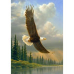 5D DIY Full Drill Diamond Painting Eagle Embroidery Mosaic Kit (WLL1233)
