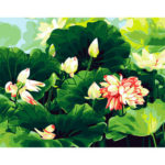 Painting By Numbers DIY Summer Lotus Hand Painted Canvas Oil Art Picture