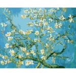 Painting By Numbers Kit DIY Apricot Flower Canvas Oil Art Picture Craft