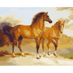 Painting By Numbers Kit DIY Horse Hand Painted Canvas Oil Art Picture Craft