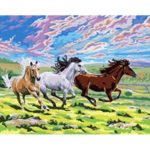 Painting By Numbers Kit DIY Horses Hand Painted Canvas Oil Art Picture Gift