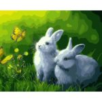 Painting By Numbers Kit DIY Butterfly Rabbit Canvas Oil Art Picture Craft