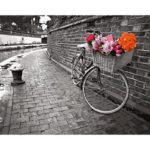 Painting By Numbers Kit DIY Rose Bike Hand Painted Canvas Oil Art Picture