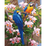 Painting By Numbers Kit DIY Flower Parrot Canvas Oil Art Picture Home Decor