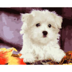 Painting By Numbers Kit DIY Cute Dog Canvas Oil Art Picture Craft (6094)