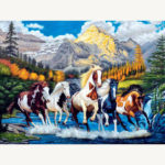 Painting By Numbers Kit DIY Gallant Horse Canvas Oil Art Picture Home Decor