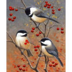 Painting By Numbers Kit DIY Birds on Branch Canvas Oil Art Picture Craft