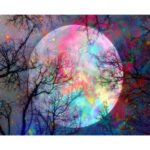 Painting By Numbers Kit DIY Color Moon Hand Painted Canvas Oil Art Picture