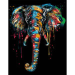 Painting By Numbers Kit DIY Colorful Elephant Canvas Oil Art Picture Craft
