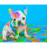 Painting By Numbers Kit DIY Colorful Dog Canvas Oil Art Picture Home Decor