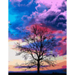 Painting By Numbers Kit DIY Cloud Tree Hand Painted Canvas Oil Art Picture