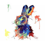 Painting By Numbers Kit DIY Color Rabbit Canvas Oil Art Picture Home Decor