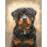 Painting By Numbers Kit DIY Sad Dog Hand Painted Canvas Oil Art Picture
