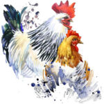 5D DIY Full Drill Diamond Painting Rooster Cross Stitch Embroidery Mosaic