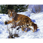 Painting By Numbers Kit DIY Tiger Snow Digital Canvas Oil Art Home Decor