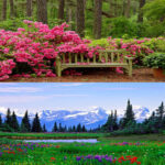 5D DIY Diamond Painting Field Flowers Full Drill Landscape Embroidery (129)