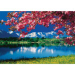 5D DIY Diamond Painting Flower Scenery Cross Stitch Mosaic Kit Home Decor