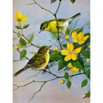 5D DIY Full Drill Diamond Painting Chatting Bird Cross Stitch Embroidery