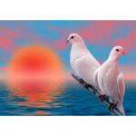 5D DIY Diamond Painting Two Pigeons Full Drill Animal Embroidery Home Decor