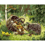 Hedgehog DIY Oil Painting By Numbers Kits Acrylics Painting Kits w/Brushes