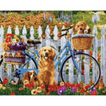 Bike and Dogs Oil Painting By Numbers DIY Paints On Canvas Picture Decor