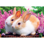 5D DIY Diamond Painting Two Rabbits Full Drill Animal Picture Cross Stitch