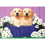 5D DIY Diamond Painting Two Dogs in Basket Full Drill Animal Cross Stitch