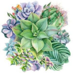 5D DIY Full Round Drill Diamond Painting Succulent Cross Stitch Embroidery