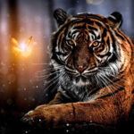 5D DIY Full Round Drill Diamond Painting Novelty Tiger Cross Stitch (B1105)
