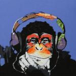 DIY Digital Oil Painting By Numbers Kits Headphone Monkey Drawing Animal
