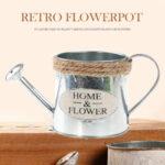 Iron Retro Vase Flower Pots Plants Display Flowerpot Watering Pot (A)