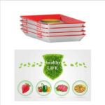 Food Preservation Tray Reusable Plastic Food Fresh Storage Container Plate