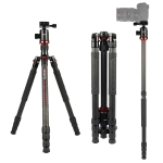 TRIOPO 888 Adjustable Portable Carbon Fiber Tripod with Q-2 Ball Head for SLR Camera, Pipe diameter: 28cm