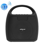 ZEALOT S42 Portable FM Radio Wireless Bluetooth Speaker with Built-in Mic, Support Hands-Free Call & TF Card & AUX (Black)