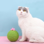 Sisal Cat Catching Ball Tumbler With Catnip Toy(Green)