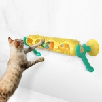 Cat Educational Toys Track Ball Turntable Pet Products