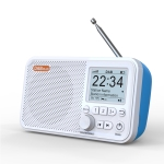 C10 2.4 inch Portable Color LCD FM / DAB Digital Radio, Support BT & TF Card (White)
